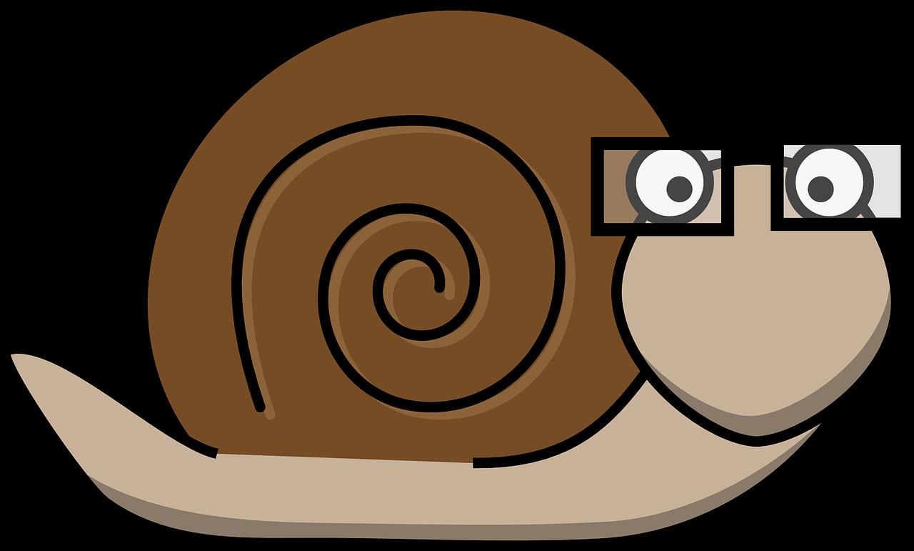 snail-306356_1280
